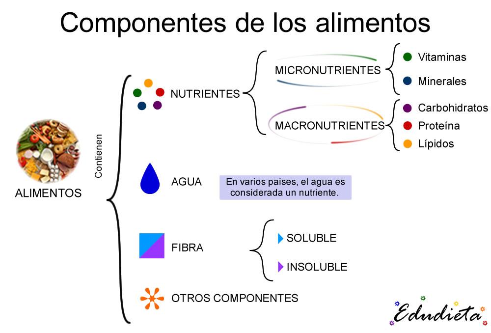 101 - Componentes de los alimentos 2