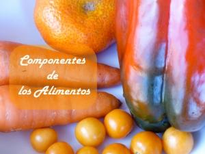 Componentes de los alimentos